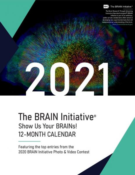2021 Show Us Your BRAINs! Calendar thumbnail