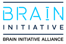 "Logo of the BRAIN Initiative Alliance, with ""BRAIN INITIATIVE"" as a letter block and ""BRAIN INITIATIVE ALLIANCE"" underneath."